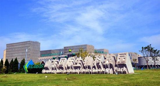 """山东国际生物科技园 """"烟台生物医药与雷竞技pc版产业创新创业共同体""""入选2020年第一批..."""